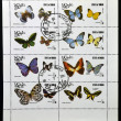 A collection stamps printed in Oman shows a series of eight pictures of butterflies — Stock Photo