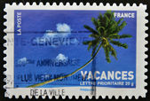 A stamp printed in France shows palm tree — Stock Photo