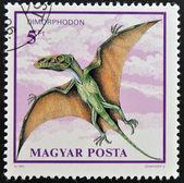 Un francobollo stampato in ungheria illustrato dimorphodon — Foto Stock
