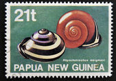 A stamp printed in Papua New Guinea shows Snails autochthonous ( rhynchotrochus weigmani) — Foto Stock