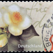A stamp printed in Germany shows image of flowers — Stock Photo