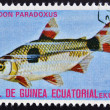 Stock Photo: EQUATORIAL GUINE- CIRC1974: stamp printed in GuineEcuatorial dedicated to exotic fish shows exodon paradoxus, circ1974.