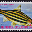 EQUATORIAL GUINEA - CIRCA 1974: A stamp printed in Guinea Ecuatorial dedicated to exotic fish shows barbus lineatus, circa 1974. - Stock Photo