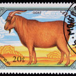 MONGOLIA -  CIRCA 1988: A Stamp printed in Mongolia shows red goat, circa 1988 — Stok fotoğraf