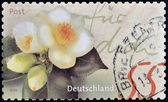 Un sello impreso en alemania muestra imagen de flores — Foto de Stock