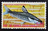 EQUATORIAL GUINEA - CIRCA 1974: A stamp printed in Guinea Ecuatorial dedicated to exotic fish shows chilodus punctatus, circa 1974. — Foto Stock