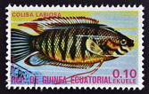 EQUATORIAL GUINEA - CIRCA 1974: A stamp printed in Guinea Ecuatorial dedicated to exotic fish shows colisa labiosa, circa 1974. — Stock Photo