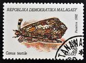 MADAGASCAR - CIRCA 1992: A stamp printed in Madagacar shows conus textile, circa 1992 — Stock Photo