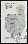OMAN - CIRCA 1973: stamp printed in State of Oman dedicated to cats shows long haired blue cream, circa 1973 — Stock Photo