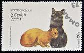 Omã - por volta de 1973: selo imprimido em estado de omã, dedicado aos gatos mostra cabelo curto creme e azul britânico, por volta de 1973 — Foto Stock