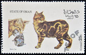 OMAN - CIRCA 1973: stamp printed in State of Oman dedicated to cats shows manx cat, circa 1973 — ストック写真