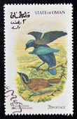 OMAN - CIRCA 1973: A stamp printed in Oman dedicated to exotic birds shows lessersuperb bird of paradise, circa 1973 — Stock Photo