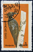 STATE OF OMAN - CIRCA 1977: stamp printed in State of Oman dedicated to the birds shows woodpecker, circa 1977 — Stock Photo