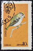 STATE OF OMAN - CIRCA 1977: stamp printed in State of Oman dedicated to the birds shows goldcrest, circa 1977 — Stock Photo