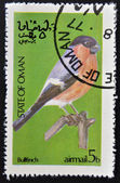 STATE OF OMAN - CIRCA 1977: stamp printed in State of Oman dedicated to the birds shows bullfinch, circa 1977 — Foto de Stock