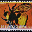 Stock Photo: EQUATORIAL GUINE- CIRC1973: stamp printed in Guinededicated to insects shows bumblebee, circ1973