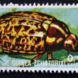 Stock Photo: EQUATORIAL GUINE- CIRC1973: stamp printed in Guinededicated to insects shows Colorado beetle, circ1973