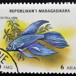 Stock Photo: MADAGASCAR - CIRC1994: stamp printed in Madagascar dedicated to fish shows bettsplendens, circ1994