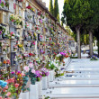 Stock Photo: Tombs and niches with flowers