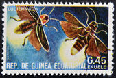 EQUATORIAL GUINEA - CIRCA 1973: stamp printed in Guinea dedicated to insects shows firefly, circa 1973 — Stock Photo