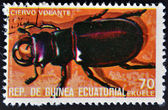 EQUATORIAL GUINEA - CIRCA 1973: stamp printed in Guinea dedicated to insects shows stag beetle, circa 1973 — Stock Photo
