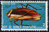 EQUATORIAL GUINEA - CIRCA 1973: stamp printed in Guinea dedicated to insects shows cockroach, circa 1973 — Stock Photo