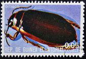 Gwinea Równikowa - około 1973: znaczek wydrukowany w Gwinei poświęcony owady pokazuje ditisco, około 1973 — Zdjęcie stockowe