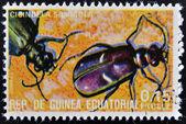 Guiné equatorial - por volta de 1973: selo imprimido na guiné dedicado aos insetos mostra cicindela sylvicola, por volta de 1973 — Fotografia Stock