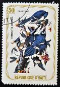 HAITI - CIRCA 1975: A stamp printed in Haiti shows Blue Jay, circa 1975 — Stock Photo