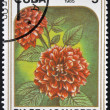 图库照片: Stamp printed in Cubdedicated to mother´s day shows image of two dahlias