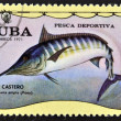 A stamp printed in Cuba dedicated to sport fishing, shows marlin, Makaira ampla - Stock Photo