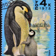 "A Stamp printed in Russia shows  Emperor Penguin and chick from the series ""Antarctic Fauna"" — Stock Photo"
