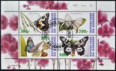 Známky v burundi ukazuje motýli — Stock fotografie