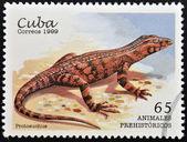 Un francobollo stampato a cuba dedicato agli animali preistorici, illustrato protosuchus — Foto Stock