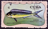 A stamp printed in Cuba dedicated to sport fishing, shows dorado, Coryphaena hippurus — Stock Photo