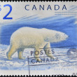 CANADA - CIRCA 1998: A stamp printed in Canada shows a Polar Bear, Ours blanc, circa 1998 — Photo