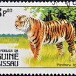 GUINEA BISSAU - CIRCA 1984: A stamp printed in Guinea shows panthera tigris, circa 1984 — Stock Photo