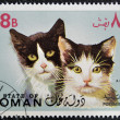 OMAN - CIRCA 1971: stamp printed in Oman, shows two black and white cat, circa 1971 — Photo