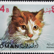 OMAN - CIRCA 1971: stamp printed in State of Oman shows European common cat, circa 1971 — Stock Photo #14183511