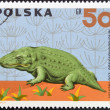 POLAND - CIRCA 1966: A stamp printed in Poland shows Mastodonsaurus from the series Dinosaurs, Prehistoric Vertebrates, circa 1966 — Stock Photo