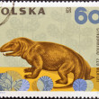 POLAND - CIRCA 1966: A stamp printed in Poland shows Cynognathus from the series Dinosaurs, Prehistoric Vertebrates, circa 1966 — Stock Photo