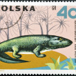 Stock Photo: POLAND - CIRC1966: stamp printed in Poland shows Ichthyostegfrom series Dinosaurs, Prehistoric Vertebrates, circ1966