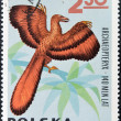 POLAND - CIRCA 1966: A stamp printed in Poland shows Archaeopteryx from the series Dinosaurs, Prehistoric Vertebrates, circa 1966 — Stock Photo #14183657