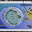 TANZANIA - CIRCA 1995: A stamp printed in Tanzania showing Jellyfish, circa 1995 — Stock Photo