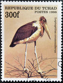 CHAD - CIRCA 1998: A stamp printed in Chad shows leptoptilus crumeniferus, circa 1998 — Stock Photo