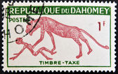 DAHOMEY - CIRCA 1966: stamp printed in Dahomey shows leopard has attacked the person, circa 1966. — Stock Photo