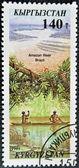 KYRGYZSTAN - CIRCA 1995: A stamp printed in Kyrgyzstan shows amazon river, Brazil, circa 1995 — Stock Photo