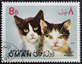 OMAN - CIRCA 1971: stamp printed in Oman, shows two black and white cat, circa 1971 — Foto de Stock