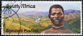 SOUTH AFRICA - CIRCA 2006: A stamp printed in RSA dedicated to Centennial Bhambatha Rebellion, circa 2006 — 图库照片