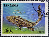 TANZANIA - CIRCA 1995: A stamp printed in Tanzania showing Shark, circa 1995 — Stock Photo